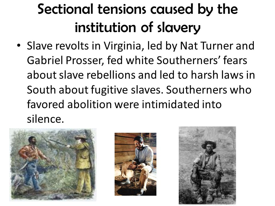 Sectional tensions caused by the institution of slavery Slave revolts in Virginia, led by Nat Turner and Gabriel Prosser, fed white Southerners' fears