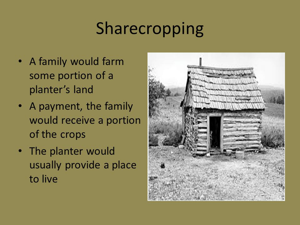 Sharecropping A family would farm some portion of a planter's land A payment, the family would receive a portion of the crops The planter would usually provide a place to live