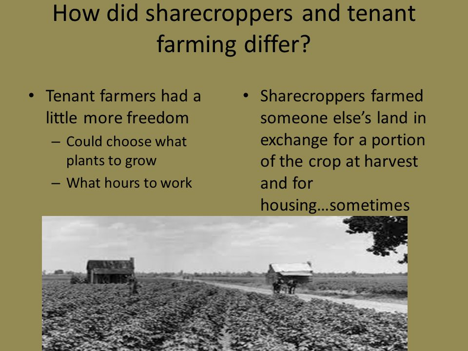 How did sharecroppers and tenant farming differ.
