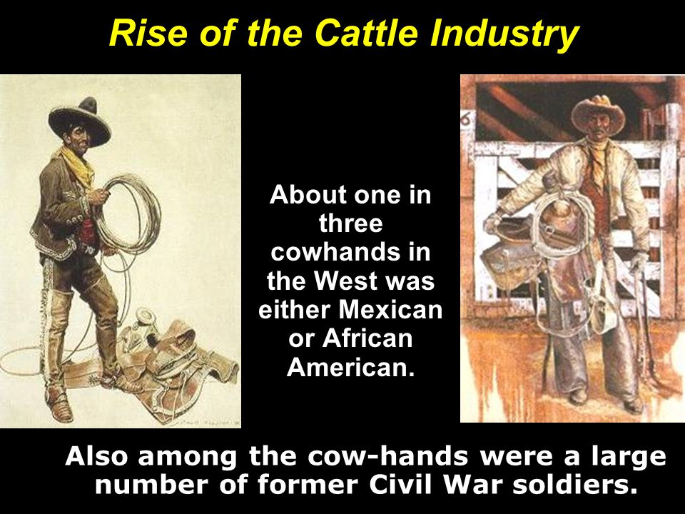 Rise of the Cattle Industry About one in three cowhands in the West was either Mexican or African American.