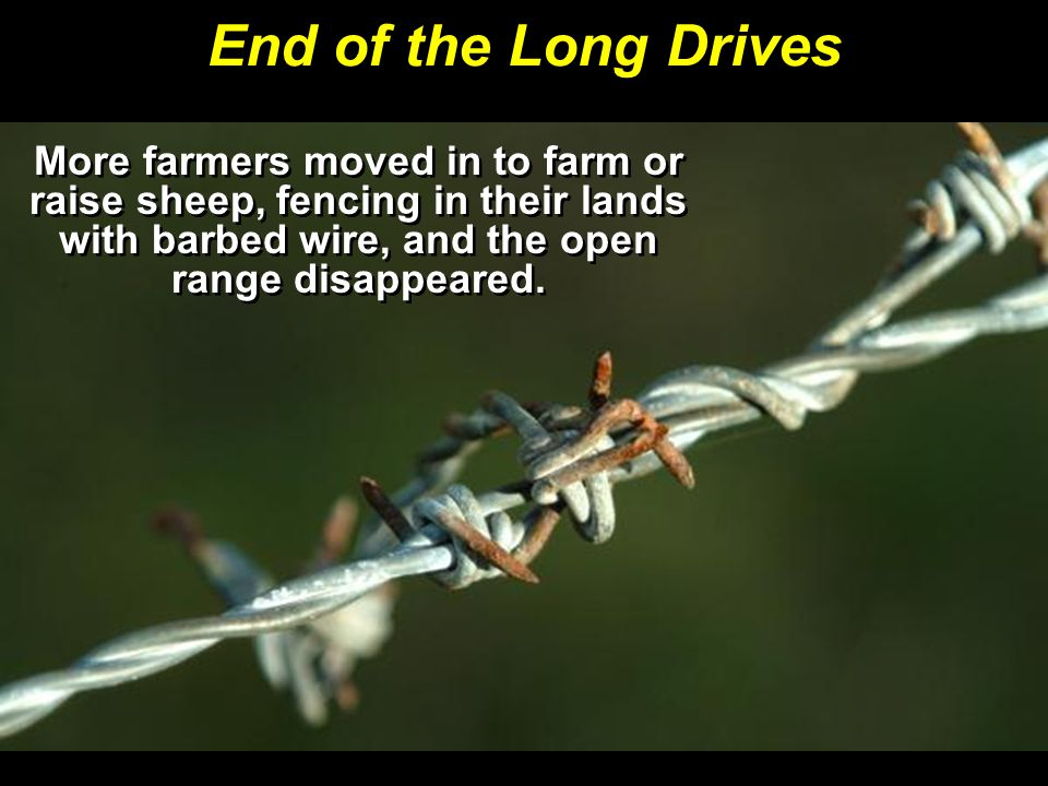 End of the Long Drives More farmers moved in to farm or raise sheep, fencing in their lands with barbed wire, and the open range disappeared.