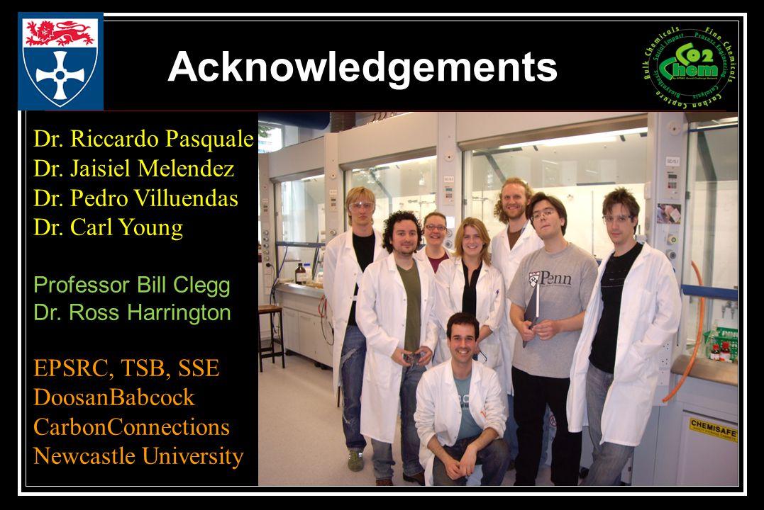 Acknowledgements Dr. Riccardo Pasquale Dr. Jaisiel Melendez Dr.