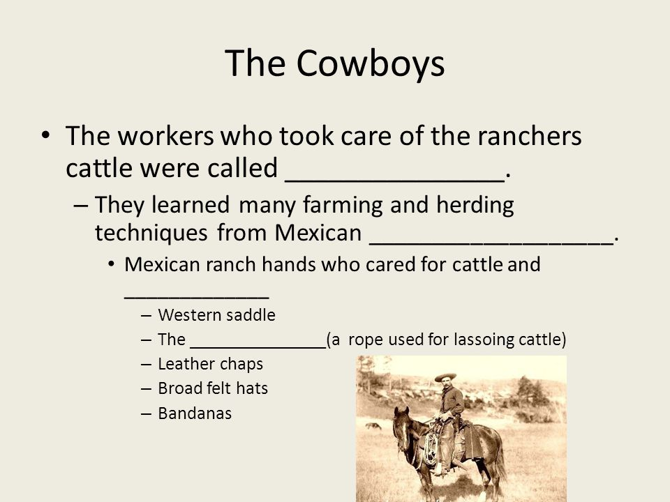 The Cowboys The workers who took care of the ranchers cattle were called _______________.