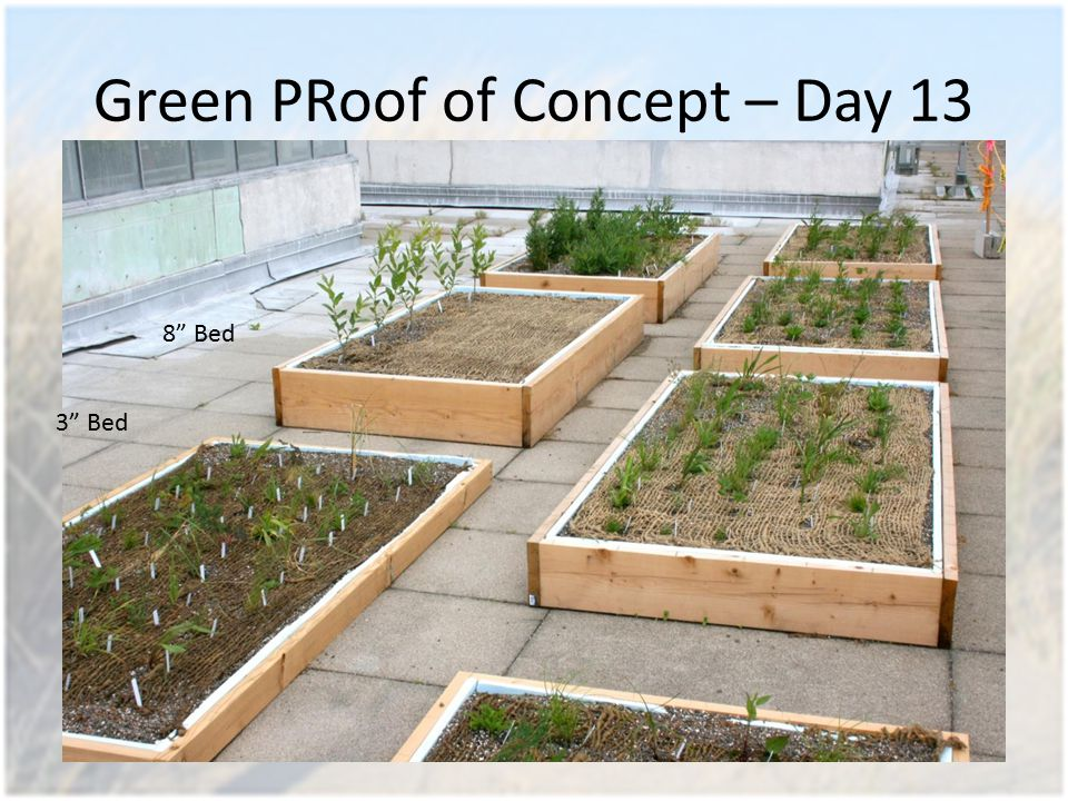 Green PRoof of Concept – Day 13 3 Bed 8 Bed