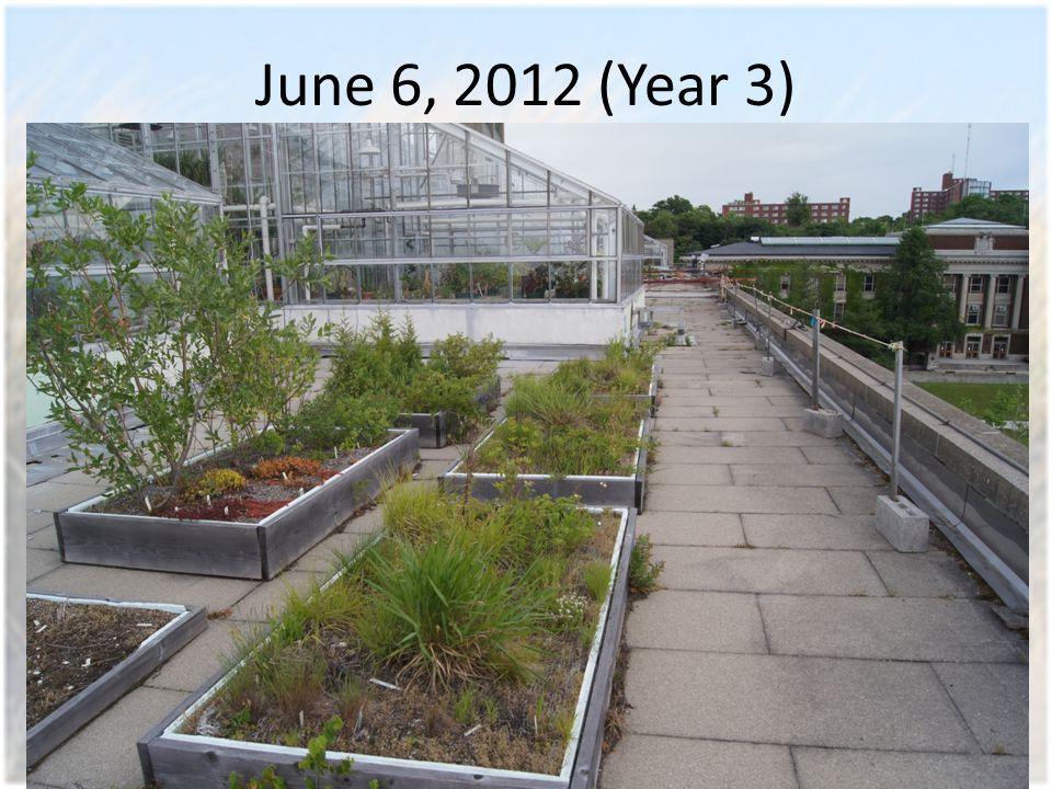 June 6, 2012 (Year 3)