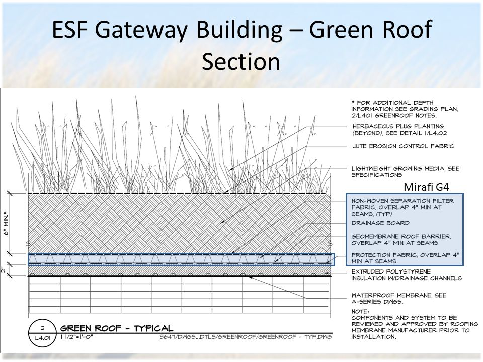 ESF Gateway Building – Green Roof Section Mirafi G4