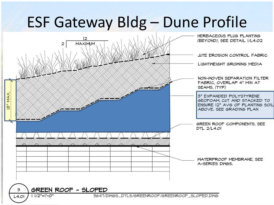 ESF Gateway Bldg – Dune Profile