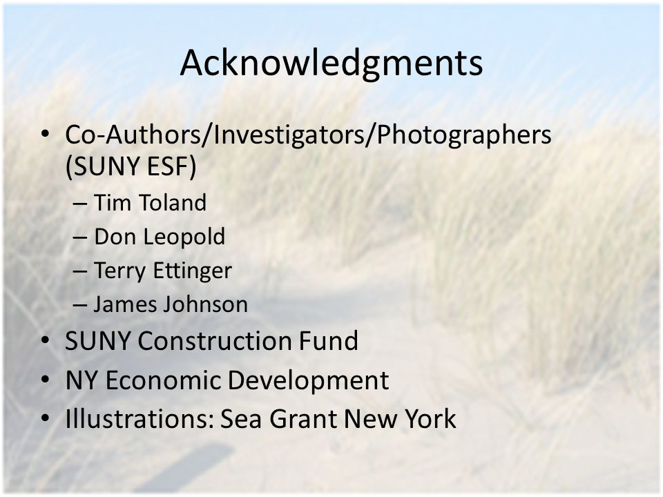 Acknowledgments Co-Authors/Investigators/Photographers (SUNY ESF) – Tim Toland – Don Leopold – Terry Ettinger – James Johnson SUNY Construction Fund NY Economic Development Illustrations: Sea Grant New York