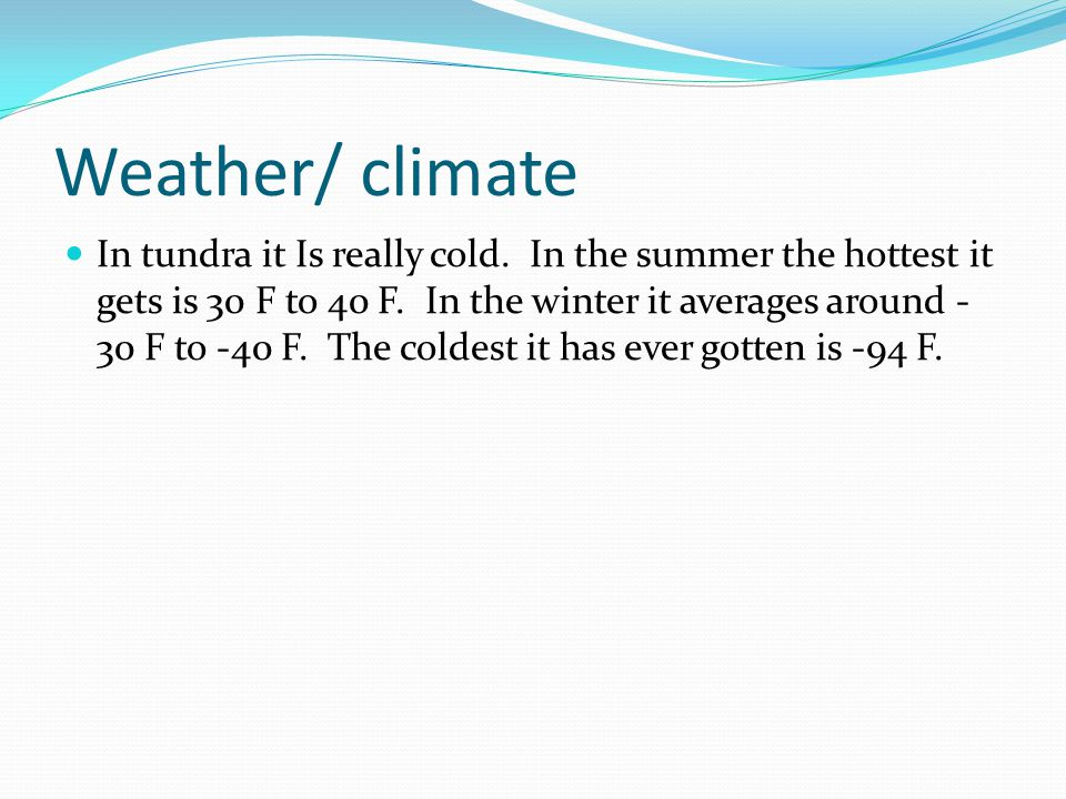 Weather/ climate In tundra it Is really cold.In the summer the hottest it gets is 30 F to 40 F.