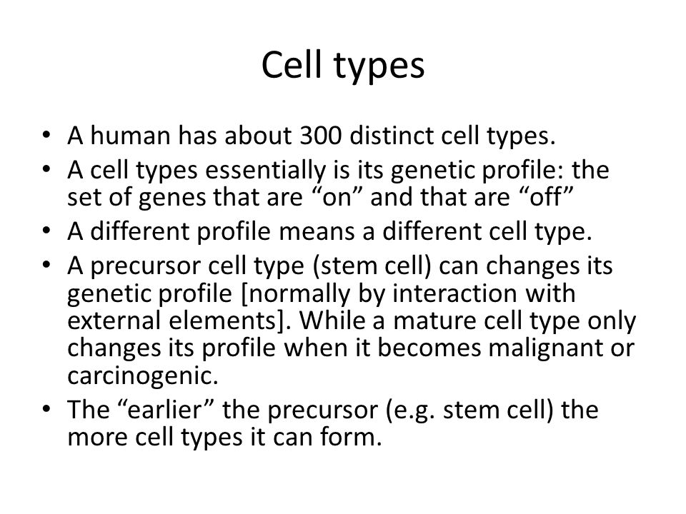 Cell types A human has about 300 distinct cell types.