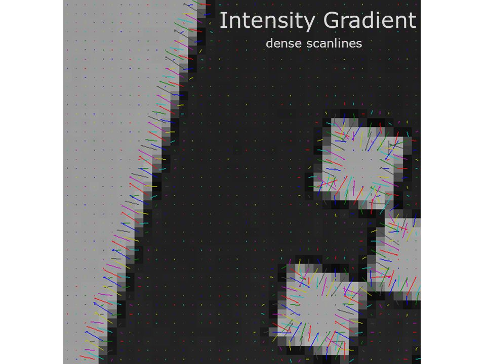 Intensity Gradient dense scanlines