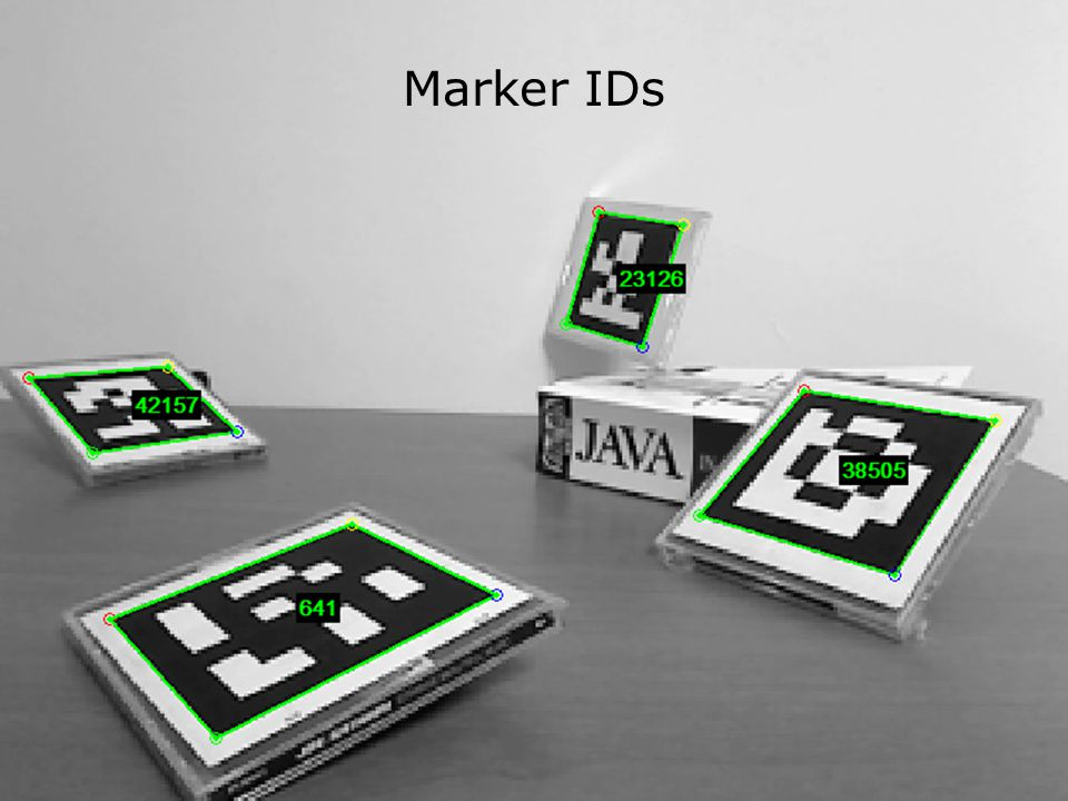 Marker IDs