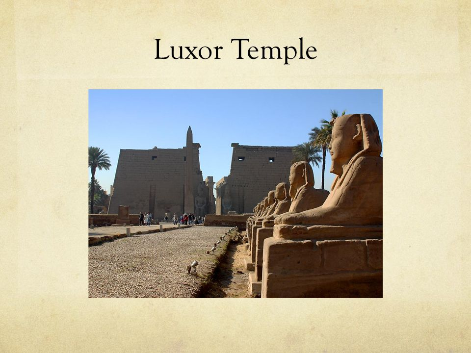 The Date of the Exodus Archaeological/Historical Support for Early Date (1446) During the Conquest, Amenhotep III (1416-1377) was pharaoh.