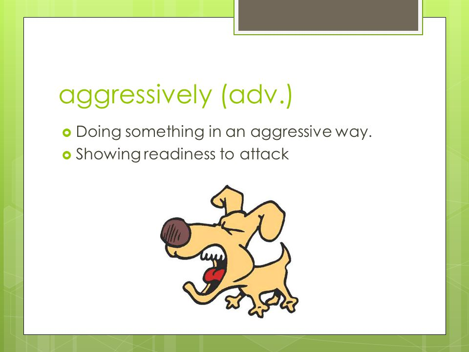 aggressively (adv.)  Doing something in an aggressive way.  Showing readiness to attack