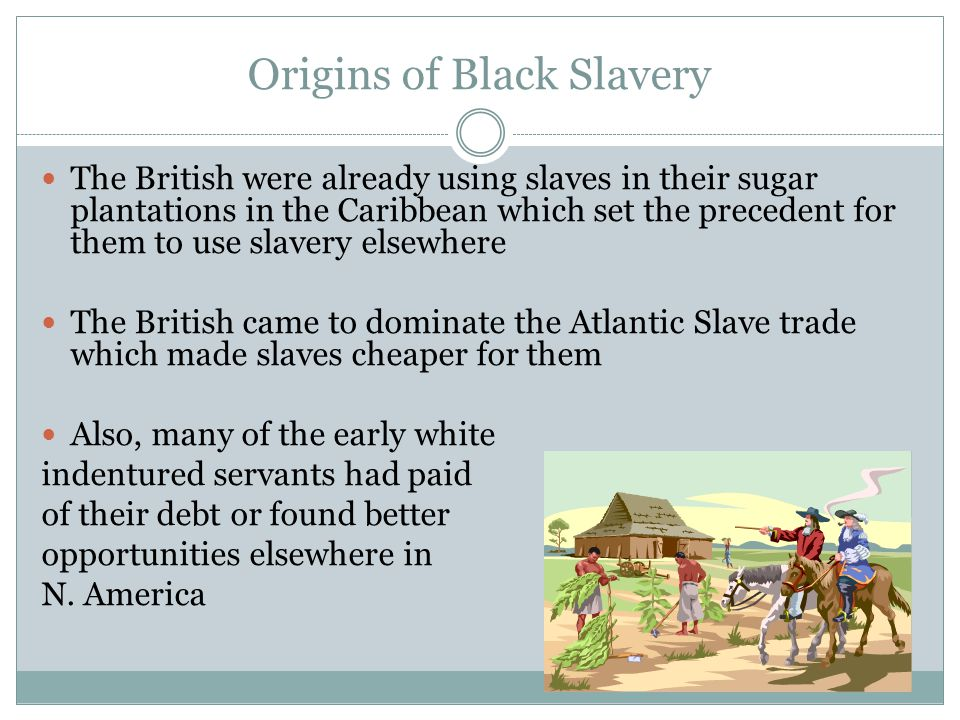 Origins of Black Slavery The British were already using slaves in their sugar plantations in the Caribbean which set the precedent for them to use slavery elsewhere The British came to dominate the Atlantic Slave trade which made slaves cheaper for them Also, many of the early white indentured servants had paid of their debt or found better opportunities elsewhere in N.