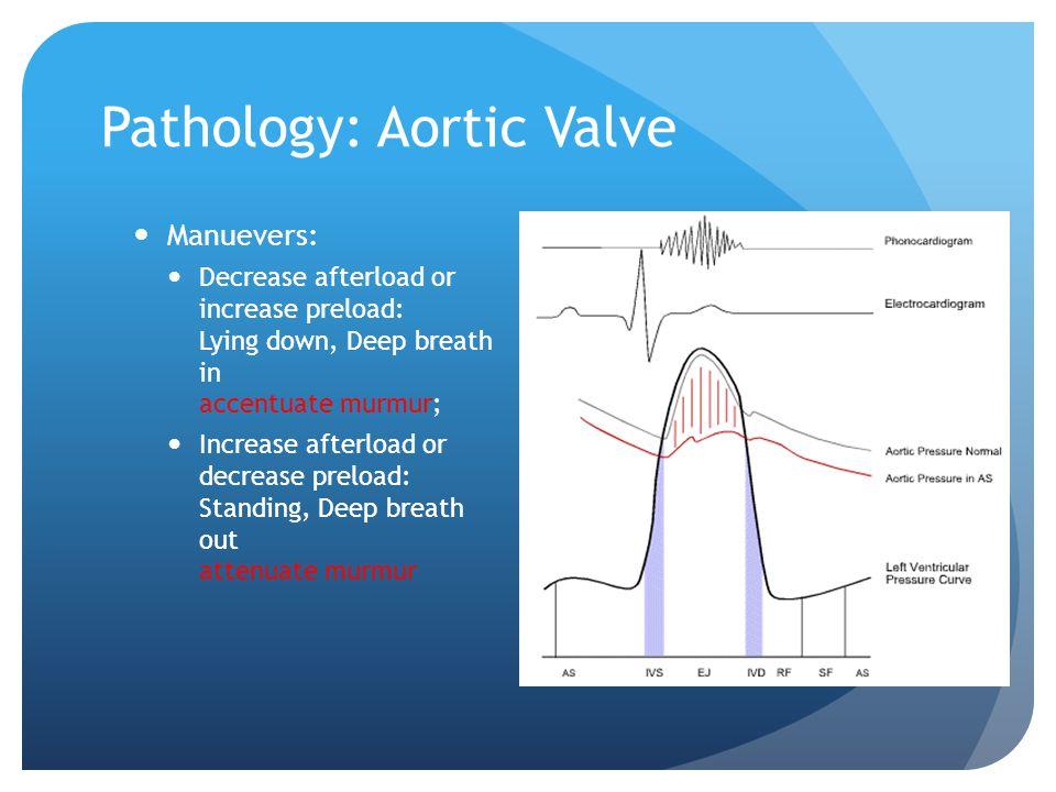 Pathology: Aortic Valve Manuevers: Decrease afterload or increase preload: Lying down, Deep breath in accentuate murmur; Increase afterload or decreas