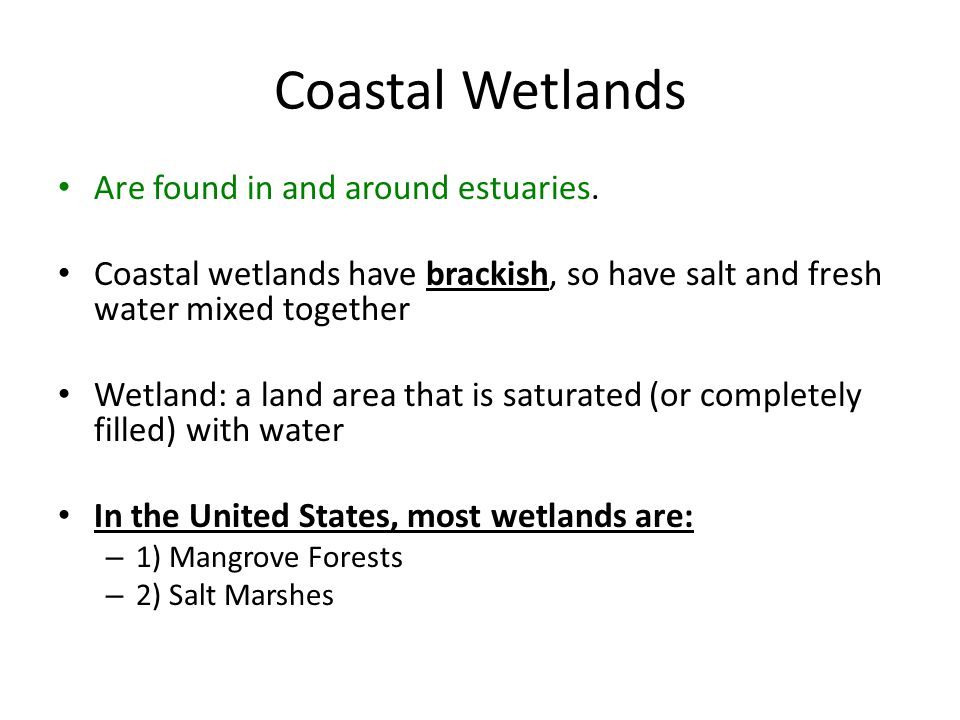 Coastal Wetlands Are found in and around estuaries. Coastal wetlands have brackish, so have salt and fresh water mixed together Wetland: a land area t