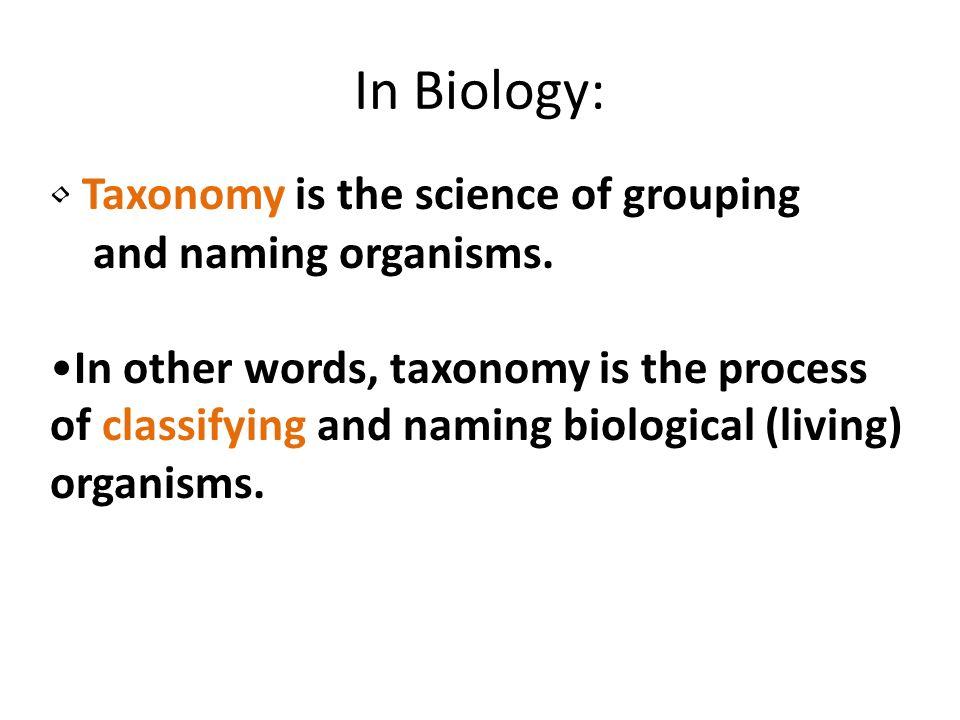 Prokaryotes Eukaryotes