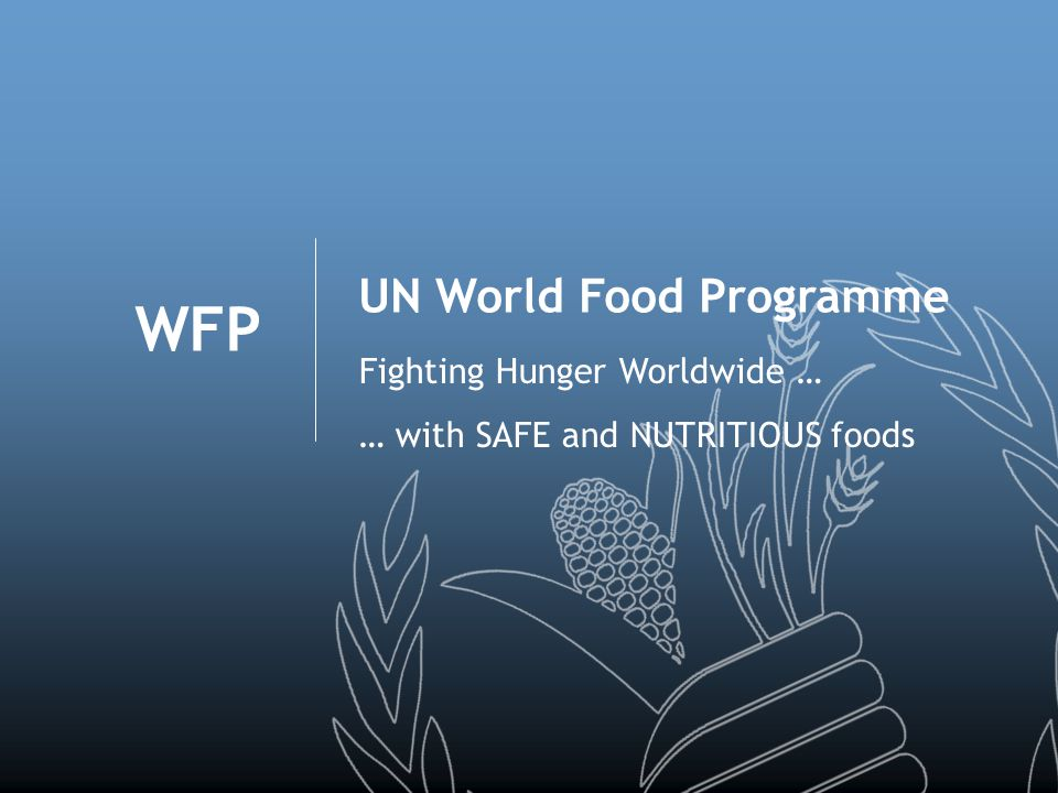 WFP UN World Food Programme Fighting Hunger Worldwide … … with SAFE and NUTRITIOUS foods