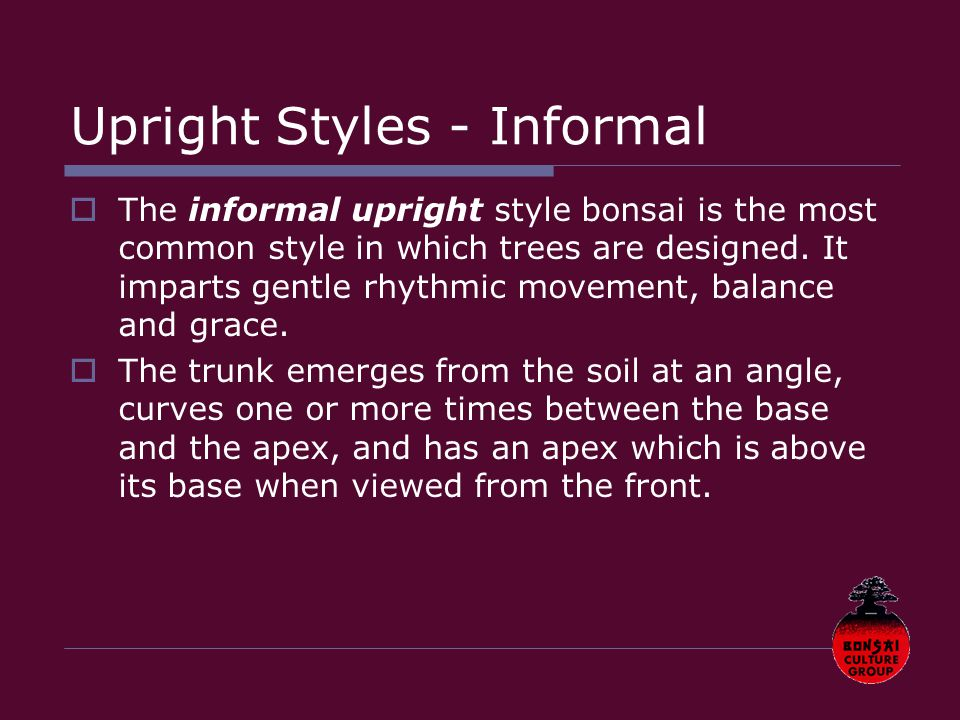 Upright Styles - Informal  The informal upright style bonsai is the most common style in which trees are designed.