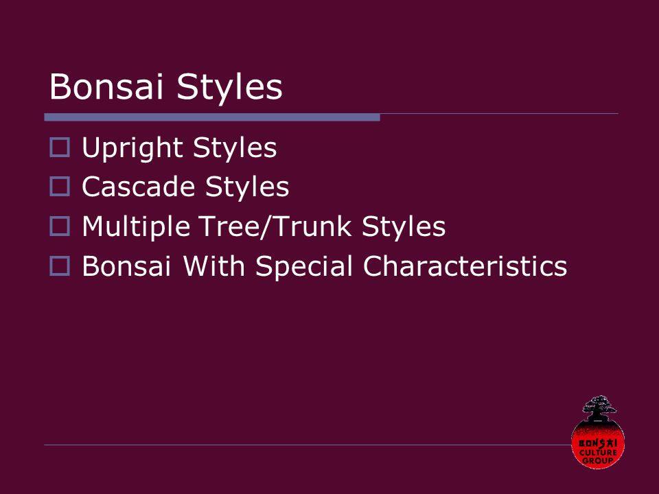 Bonsai Styles  Upright Styles  Cascade Styles  Multiple Tree/Trunk Styles  Bonsai With Special Characteristics