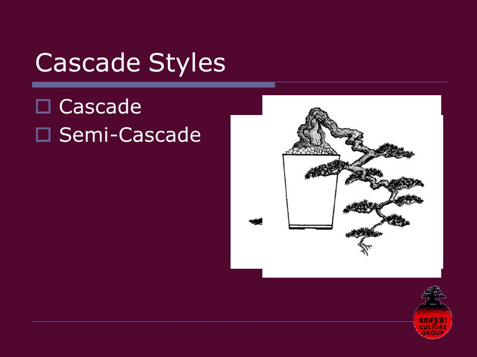 Cascade Styles  Cascade  Semi-Cascade