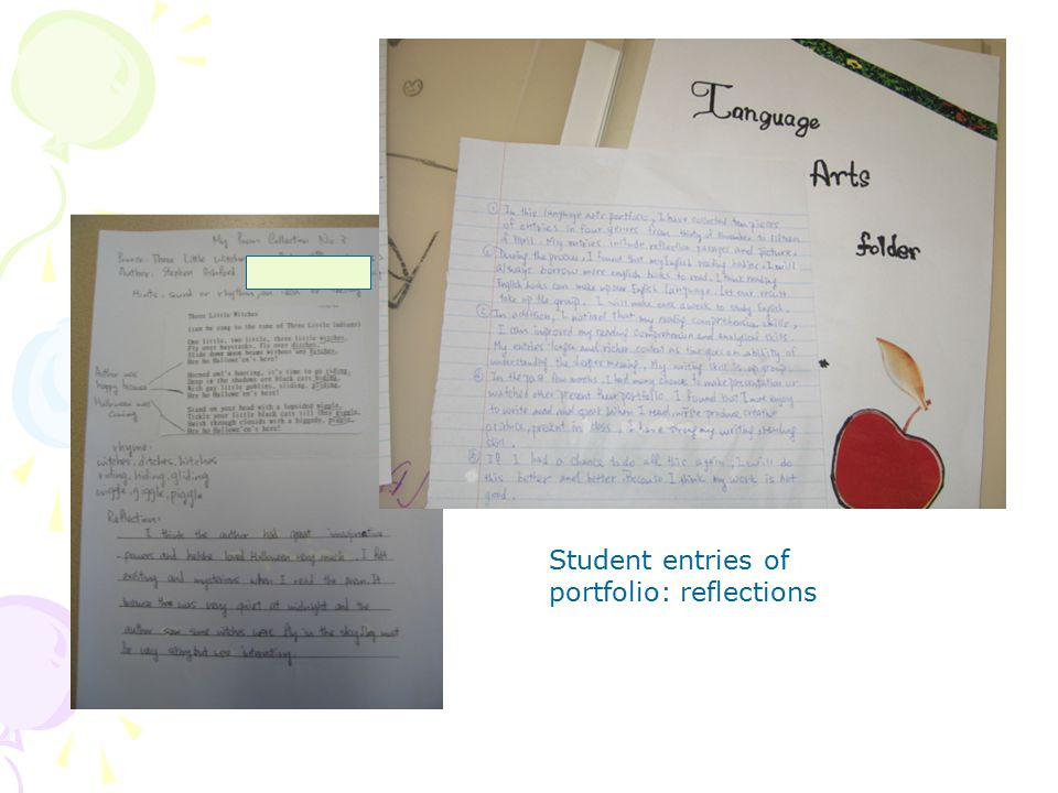 Student entries of portfolio: reflections