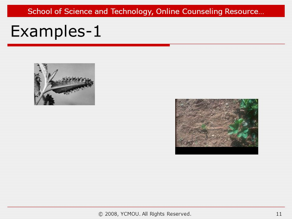 School of Science and Technology, Online Counseling Resource… Examples-1 © 2008, YCMOU.