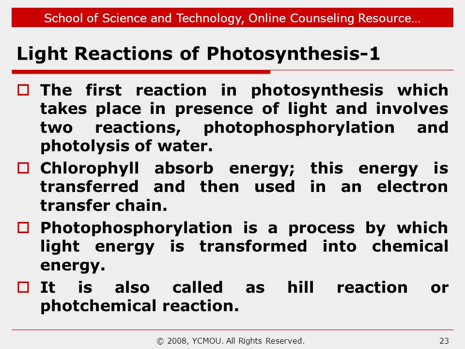 School of Science and Technology, Online Counseling Resource… Light Reactions of Photosynthesis-1  The first reaction in photosynthesis which takes p