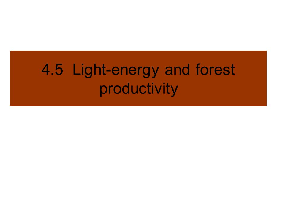 4.5 Light-energy and forest productivity