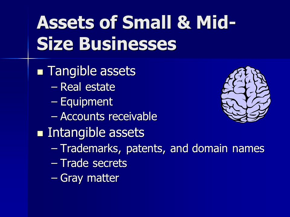 Assets of Small & Mid- Size Businesses Tangible assets Tangible assets –Real estate –Equipment –Accounts receivable Intangible assets Intangible assets –Trademarks, patents, and domain names –Trade secrets –Gray matter