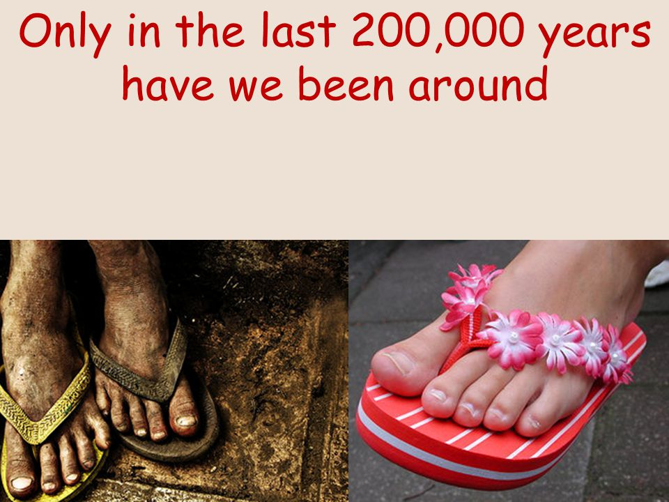 Only in the last 200,000 years have we been around