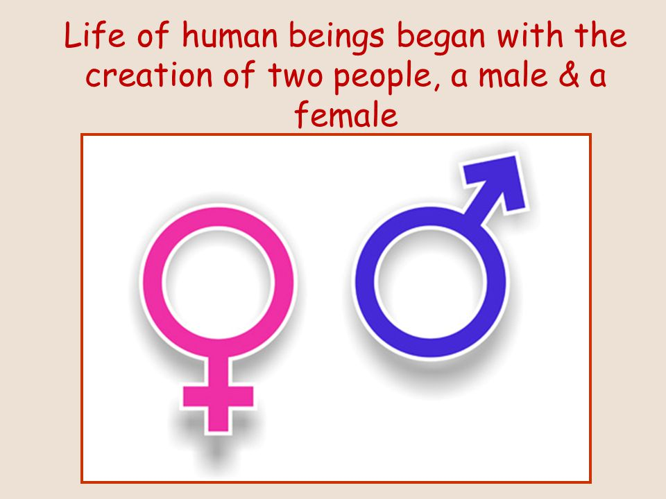 Life of human beings began with the creation of two people, a male & a female