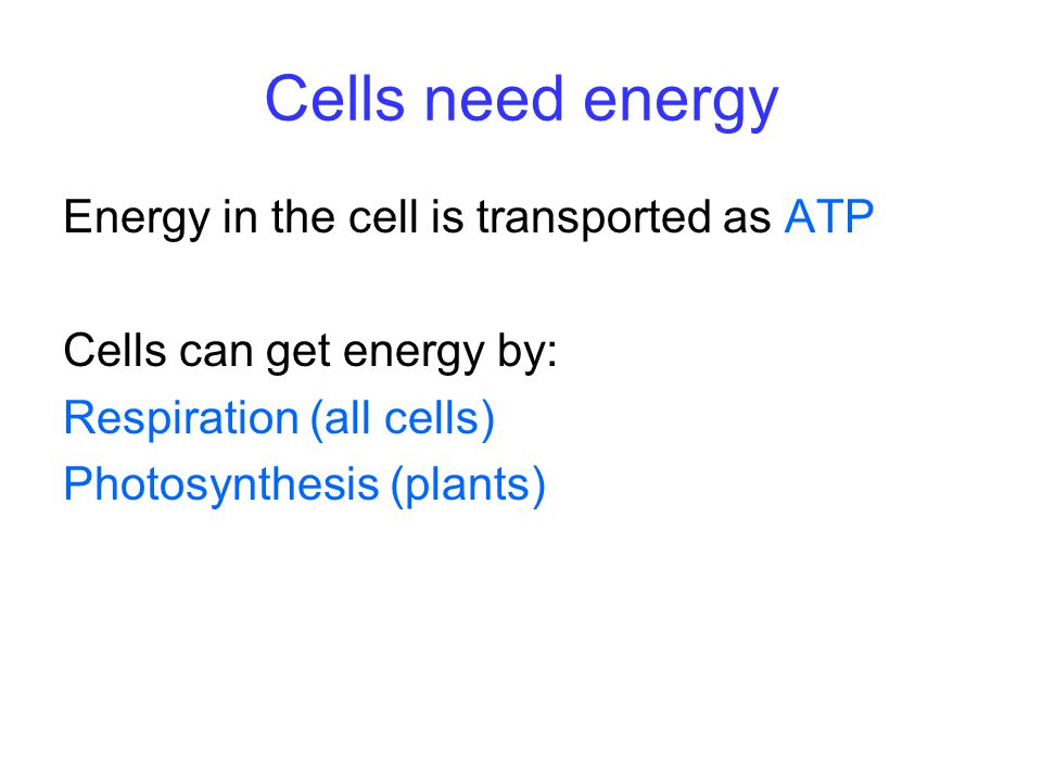 Cells need energy Energy in the cell is transported as ATP Cells can get energy by: Respiration (all cells) Photosynthesis (plants)