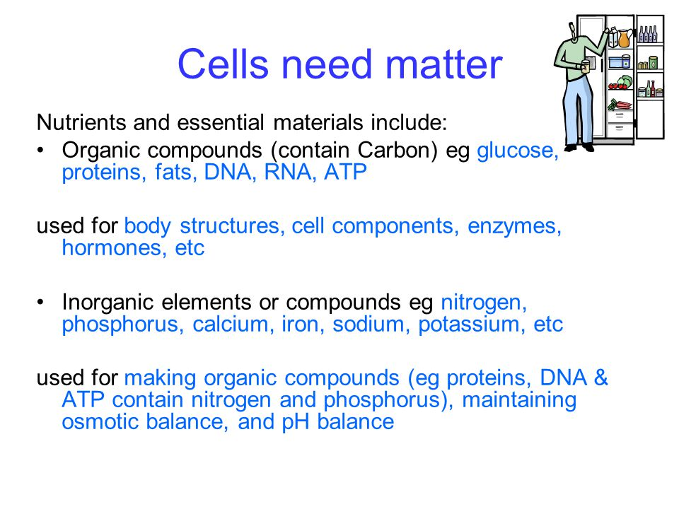 Cells need matter Nutrients and essential materials include: Organic compounds (contain Carbon) eg glucose, proteins, fats, DNA, RNA, ATP used for body structures, cell components, enzymes, hormones, etc Inorganic elements or compounds eg nitrogen, phosphorus, calcium, iron, sodium, potassium, etc used for making organic compounds (eg proteins, DNA & ATP contain nitrogen and phosphorus), maintaining osmotic balance, and pH balance
