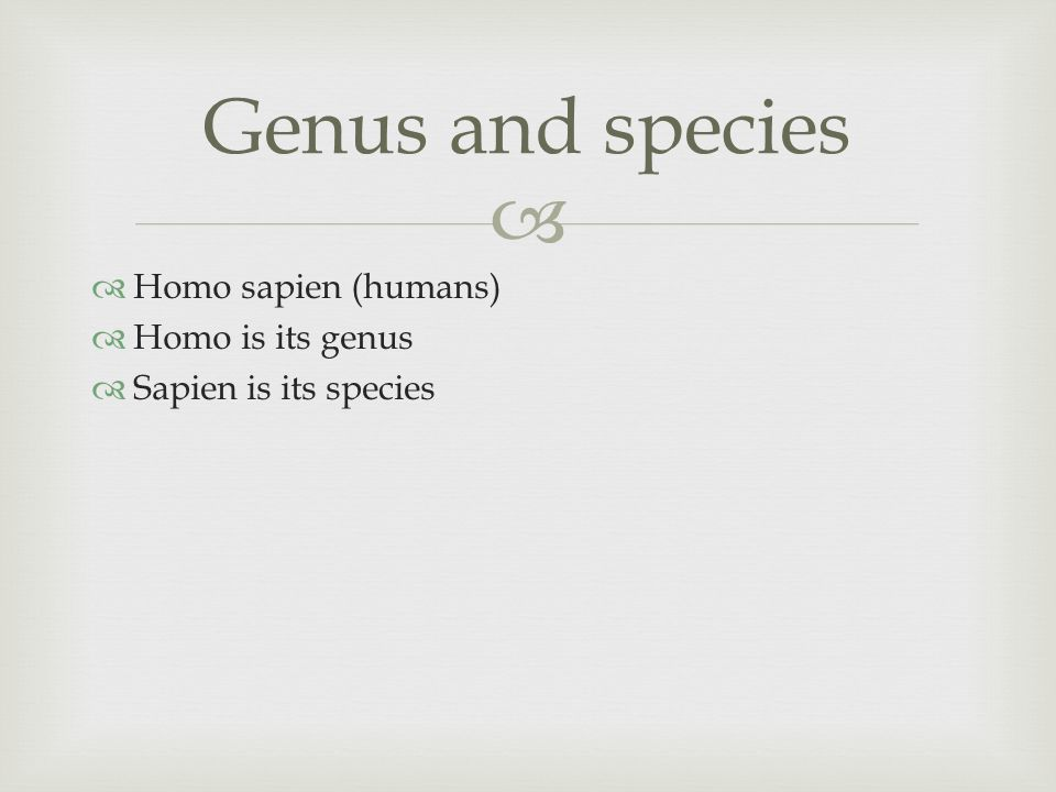   Homo sapien (humans)  Homo is its genus  Sapien is its species Genus and species
