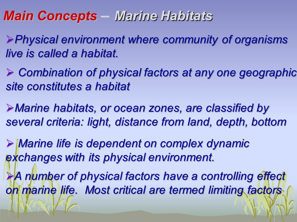 Main Concepts – Marine Habitats  Physical environment where community of organisms live is called a habitat.