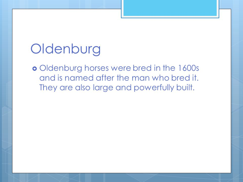 Oldenburg  Oldenburg horses were bred in the 1600s and is named after the man who bred it.