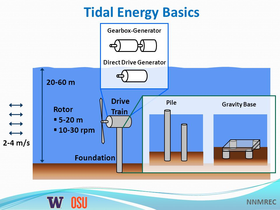 NNMREC Tidal Energy Basics 2-4 m/s 20-60 m Foundation Drive Train Rotor  5-20 m  10-30 rpm Gearbox-Generator Direct Drive Generator Pile Gravity Base