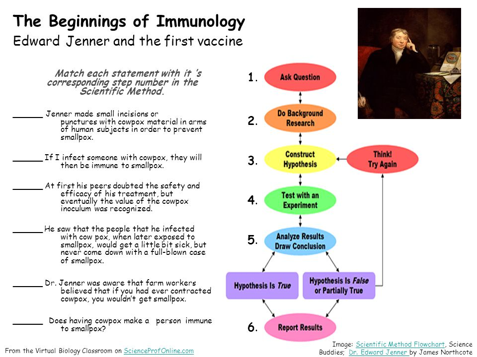 The Beginnings of Immunology Edward Jenner and the first vaccine Match each statement with it 's corresponding step number in the Scientific Method.