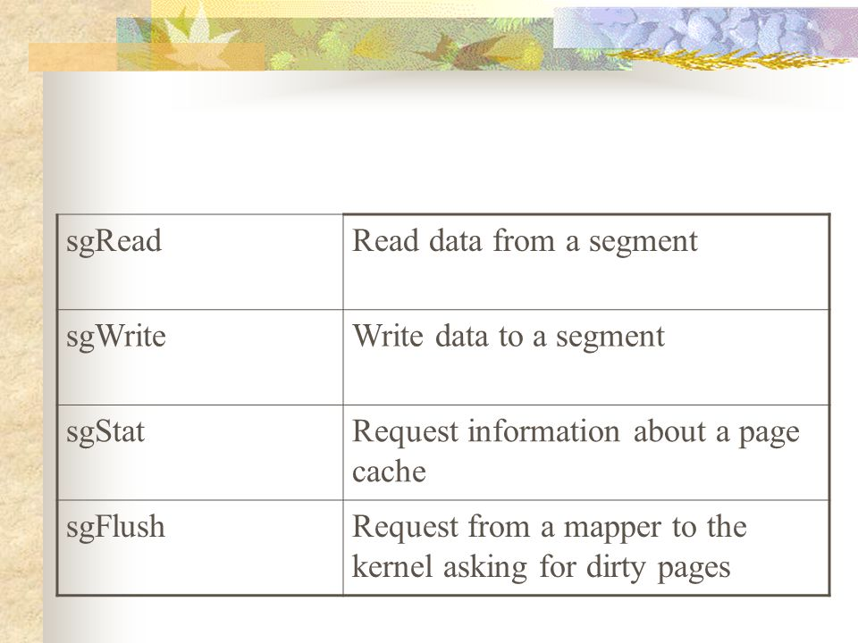 sgReadRead data from a segment sgWriteWrite data to a segment sgStatRequest information about a page cache sgFlushRequest from a mapper to the kernel