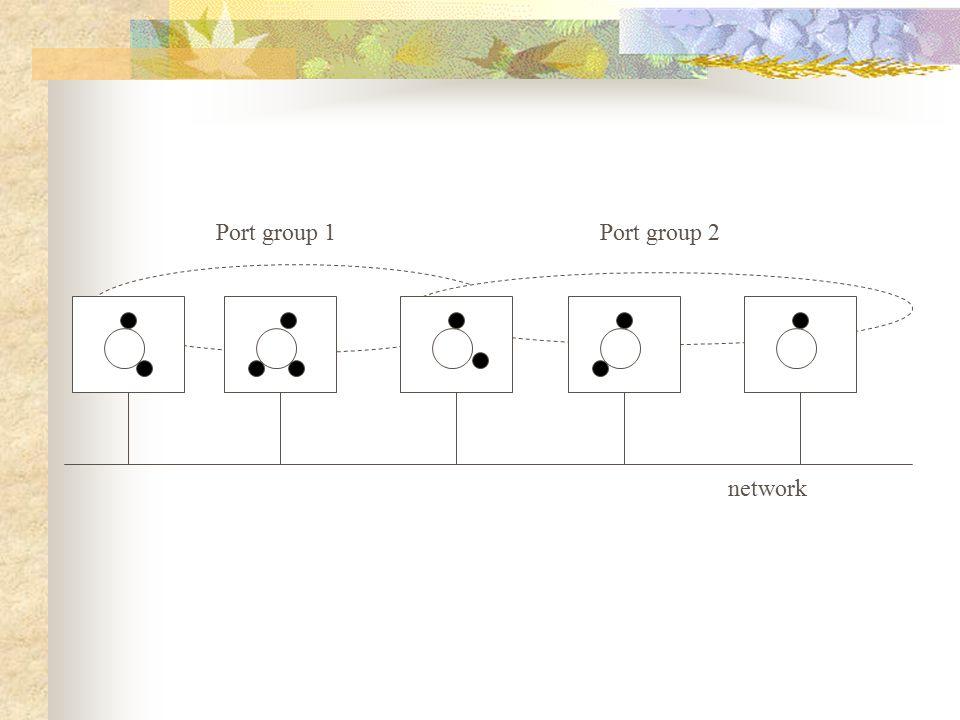 network Port group 1Port group 2