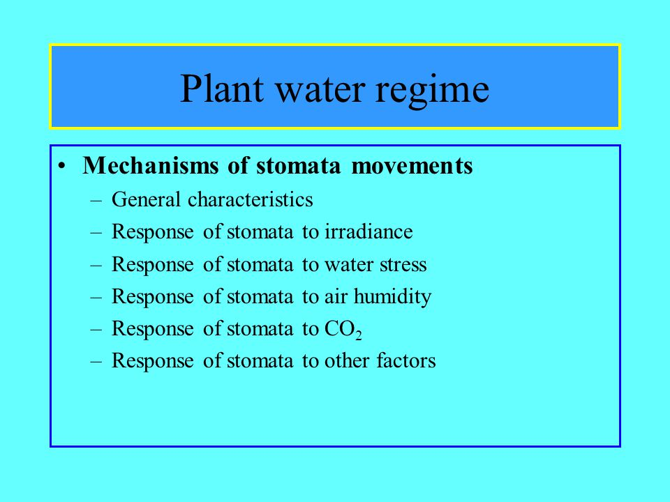 Plant water regime Mechanisms of stomata movements –General characteristics –Response of stomata to irradiance –Response of stomata to water stress –Response of stomata to air humidity –Response of stomata to CO 2 –Response of stomata to other factors
