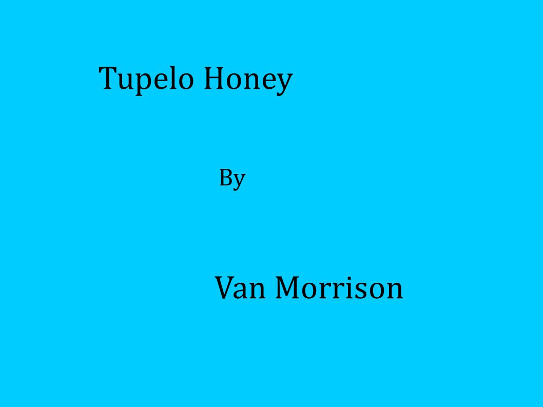 Van Morrison Tupelo Honey By