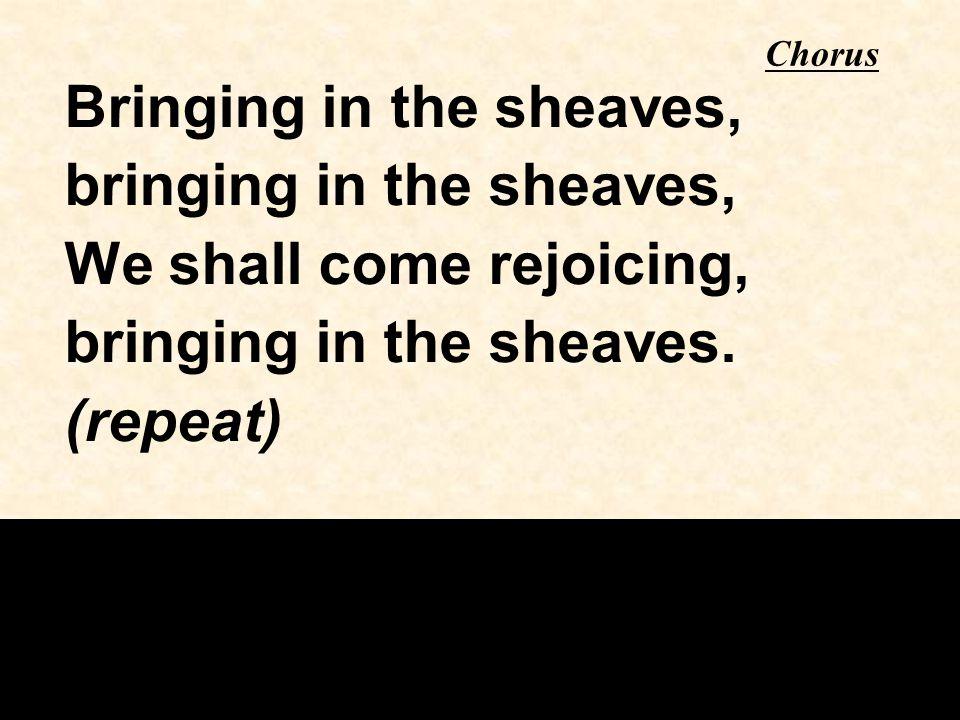 Bringing in the sheaves, bringing in the sheaves, We shall come rejoicing, bringing in the sheaves. (repeat) Chorus