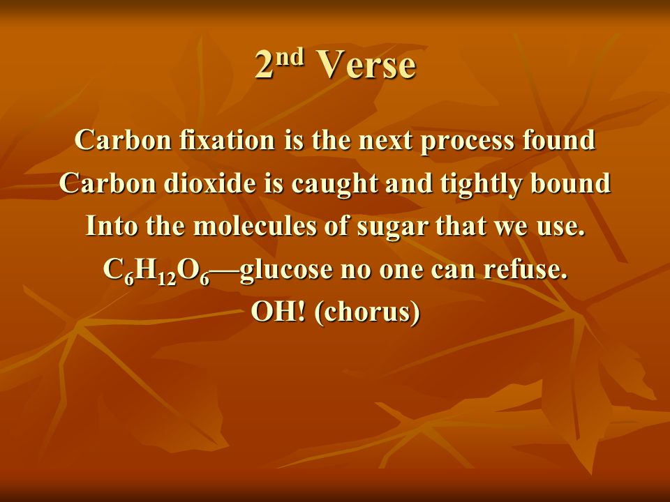 2 nd Verse Carbon fixation is the next process found Carbon dioxide is caught and tightly bound Into the molecules of sugar that we use.