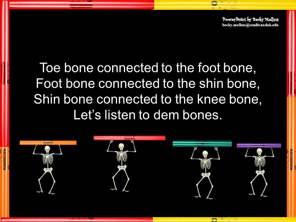 Toe bone connected to the foot bone, Foot bone connected to the shin bone, Shin bone connected to the knee bone, Let's listen to dem bones.