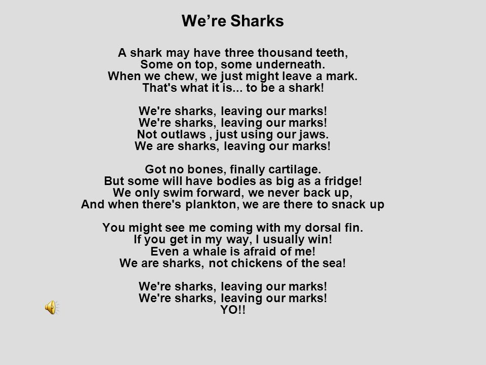 We're Sharks A shark may have three thousand teeth, Some on top, some underneath.