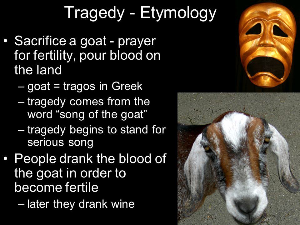 """Tragedy - Etymology Sacrifice a goat - prayer for fertility, pour blood on the land –goat = tragos in Greek –tragedy comes from the word """"song of the"""