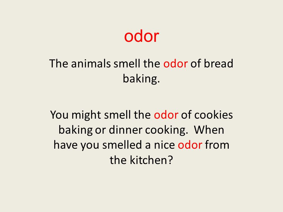 odor The animals smell the odor of bread baking. You might smell the odor of cookies baking or dinner cooking. When have you smelled a nice odor from